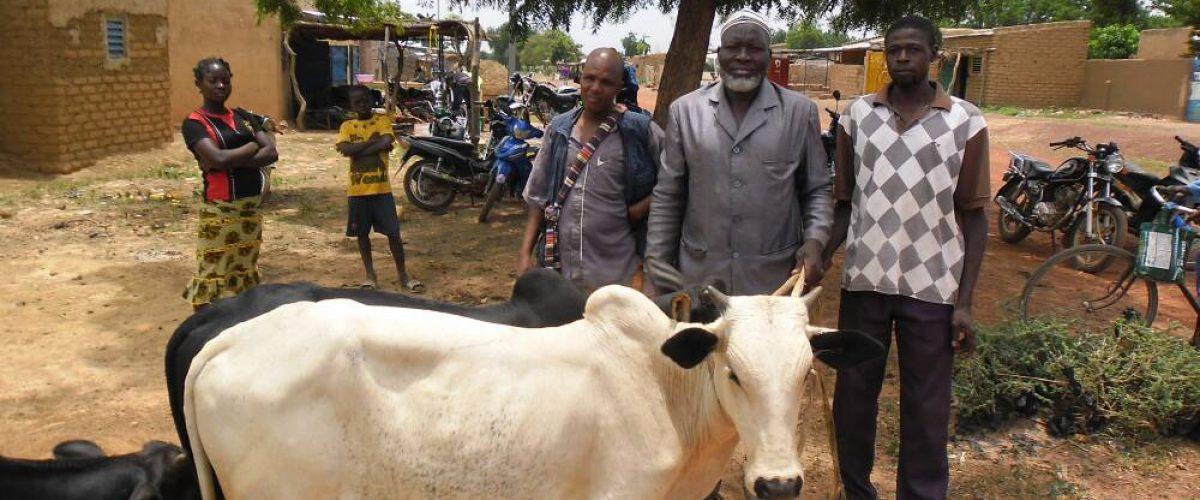 viele Familien in Burkina Faso können sich freuen