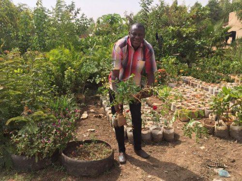 Moringa – Projekt beginnt